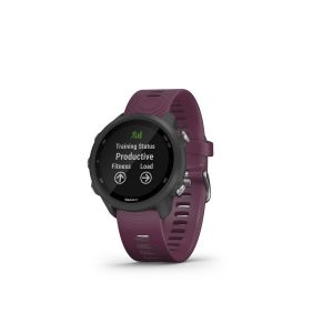 garmin forerunner 245 bordo 2